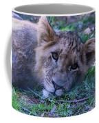 The Lion Cub Coffee Mug