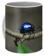 The Little Bug In The Rain Coffee Mug