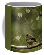 The Little Robin Coffee Mug