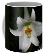 The Lone Lily Coffee Mug