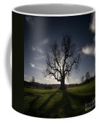 The Lonely Tree Coffee Mug by Angel  Tarantella