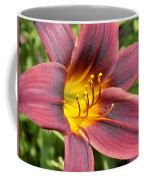 The Love Of Lilies Coffee Mug