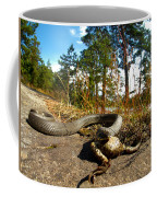 The Lunch Of Grass Snake Coffee Mug