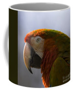The Macaw Portrait Coffee Mug