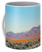 The Magic Light Of Taos  Coffee Mug