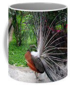 The Many Quills Of A Peacock Coffee Mug