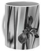 The Mystery Of Spring 2 Bw Coffee Mug