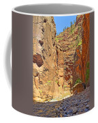 The Narrows Study 2 Coffee Mug