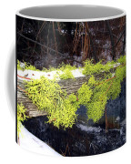 The Old Mossy Flume Coffee Mug