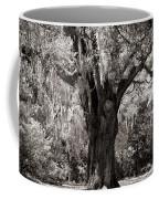 The Old Oak Is Still Standing Coffee Mug