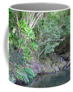 The Old Swimming Hole Coffee Mug