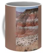 The Painted Desert  8020 Coffee Mug