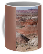 The Painted Desert  8024 Coffee Mug