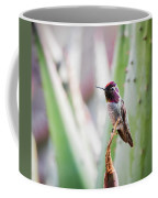 The Perfect Perch  Coffee Mug