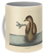 The Pied-billed Dobchick (colymbus Podiceps) Coffee Mug
