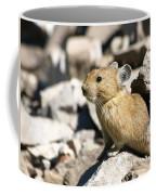 The Pika Coffee Mug