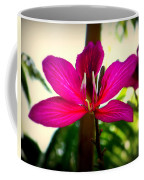 The Pink Lady Coffee Mug