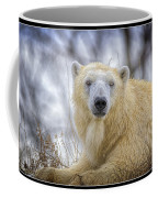 The Polar Bear Stare Coffee Mug