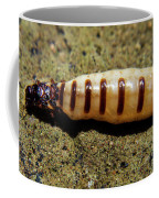 The Queen Of Termites Coffee Mug