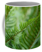 The Quiet Beauty Of Ferns Coffee Mug