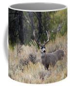 The Rack Coffee Mug by Ronnie and Frances Howard
