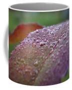Rain Falls Lightly Coffee Mug