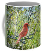 The Red Cardinal Coffee Mug