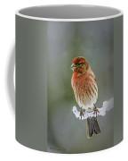 The Red Finch Coffee Mug