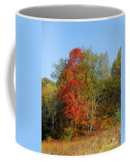 The Reds And Greens Of Autumn Coffee Mug