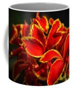 The Reds Of Winter Coffee Mug