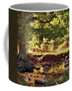 The River Lin , Bradgate Park Coffee Mug