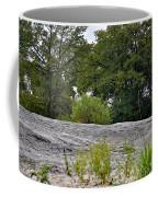 The Rocky Limestone Climb Coffee Mug