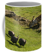 the Safari park Coffee Mug