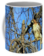 The Search Red Tail Hawk Art Coffee Mug