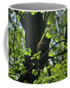 The Shy Owl Coffee Mug