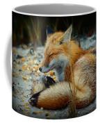 The Sleepy Fox Coffee Mug