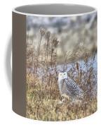 The Snowy Owl Coffee Mug