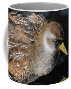 The Sora Coffee Mug