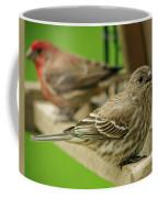 Two Finch's Coffee Mug