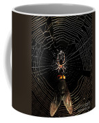 The Spider  And The Fly Coffee Mug