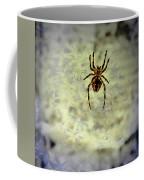 The Spider Waits Coffee Mug