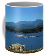 The Spit Coffee Mug