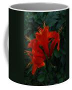 The Star Coffee Mug