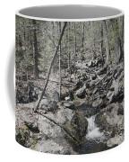 The Stoney Way Coffee Mug