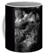 The Stream In Bw Coffee Mug