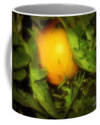 The Sun Is Sleeping In The Garden Coffee Mug