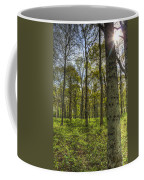 The Sun Touched Forest Coffee Mug