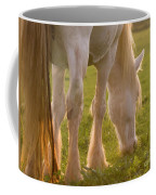 The Sunlight Caught In The Horse Tail Coffee Mug