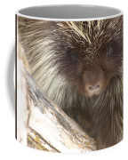 The Tender Side Of Porcupine Coffee Mug
