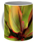 The Ti Leaf Plant In Hawaii Coffee Mug